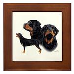 Rottweiler Framed Tile