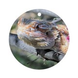 Bearded Dragon 001 Ornament (Round)