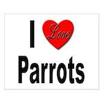 I Love Parrots Small Poster