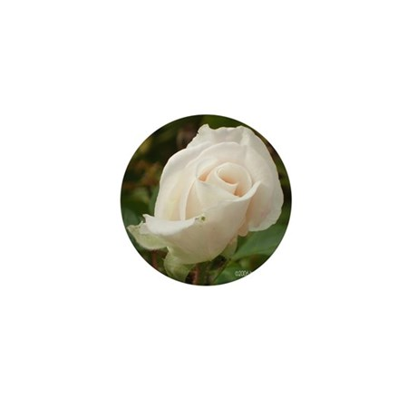 Pale Pink Rose Mini Button