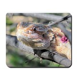 Bearded Dragon 001 Mousepad