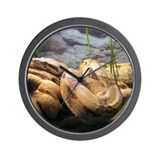 Red Tail Boa 001 Wall Clock