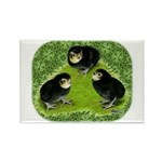 Baby Chicks in the Garden Rectangle Magnet (10 pac