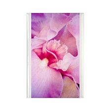 Iris Whisper Rectangle Magnet (100 pack)