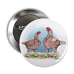 Cornish Chickens WLRed Button