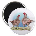 Cornish Chickens WLRed Magnet