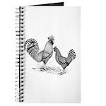 California Grey Chickens Journal