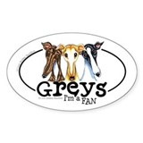 Greys Fan Funny Bumper Stickers