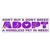 Purple Adopt Bumper Bumper Sticker
