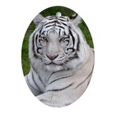 White Tiger Oval Ornament
