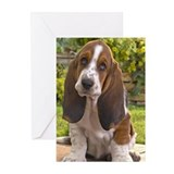 BASSET HOUND PUPPY Greeting Cards (Pk of 20)