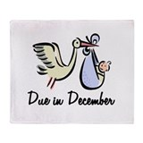 Due In December Stork Throw Blanket