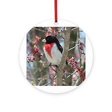 Rose-breasted Grosbeak Ornament (Round)