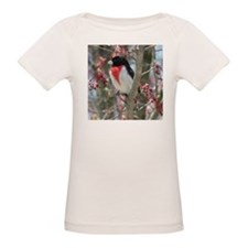 Rose-breasted Grosbeak Tee