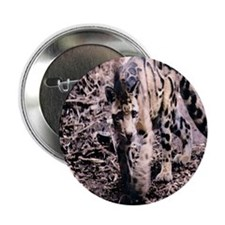 "Clouded Leopard series 2 2.25"" Button (100 pack)"