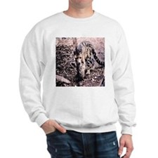 Clouded Leopard series 2 Sweatshirt