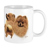 Pomeranian  Tasse