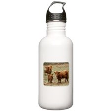 Highland Cattle 9Y316D-055 Sports Water Bottle