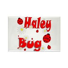 Haley Bug Rectangle Magnet