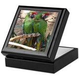 Military Macaw series 4 Keepsake Box