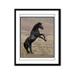 Desert Stallion Framed Panel Print
