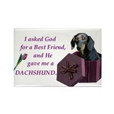 Dachshund Rectangle Magnet 10 Pack (Black Tan)