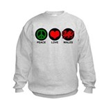 Peace Love Wales Sweatshirt