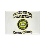 Mean Streets of Compton Rectangle Magnet (10 pack)
