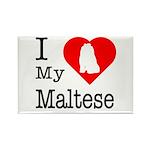 I Love My Maltese Rectangle Magnet