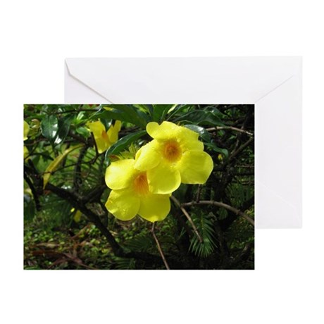 Hawaiian Flowers Blank Greeting Cards (Pk of 10)