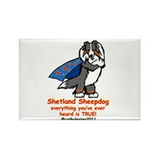 Tri Super Sheltie Rectangle Magnet (10 pack)