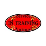 Service Animal In Training RB Patches