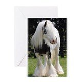 Gypsy Horse Stallion Greeting Card