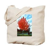"""Autumn Colour"" Tote Bag"