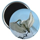 "Great White Heron 2.25"" Magnet (100 pack)"