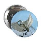 "Great White Heron 2.25"" Button (100 pack)"