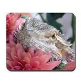 Bearded Dragon 003 Mousepad