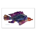 Fish Print Sticker (Rectangle 10 pk)