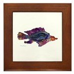 Fish Print Framed Tile