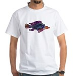 Fish Print White T-Shirt
