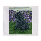 Belgian Sheepdog Baby Throw Blanket