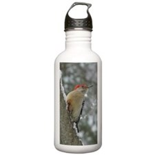 Red-bellied Woodpecker Water Bottle