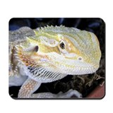 Bearded Dragon 005 Mousepad