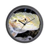 Bearded Dragon 005 Wall Clock