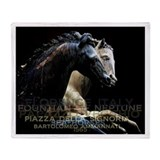 Horses of Florence Italy Throw Blanket