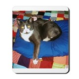 &quot;King Felix&quot; Mousepad