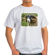 Sheep 8R17D-12 T-Shirt