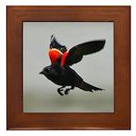 Redwing Flying Framed Tile