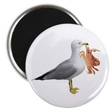 Seagull & Crab Magnet