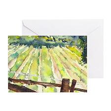 sunny napa vineyard Greeting Cards (Pk of 10)